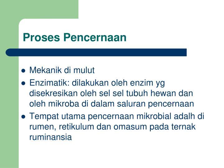 Proses Pencernaan