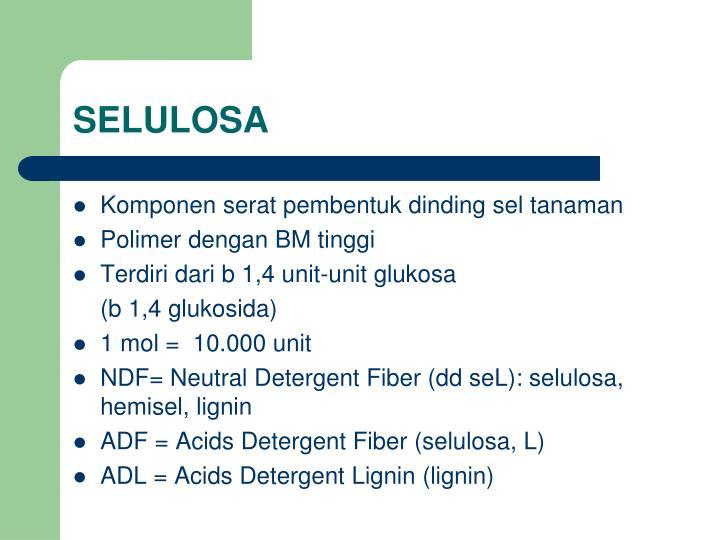 SELULOSA