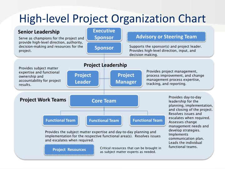 High level project organization chart