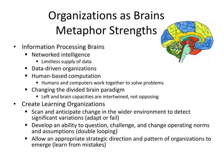 Organizations as Brains