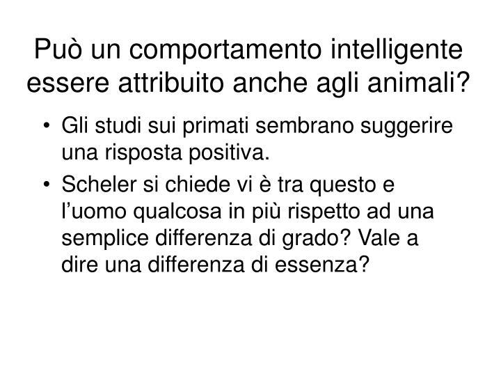 Può un comportamento intelligente essere attribuito anche agli animali?