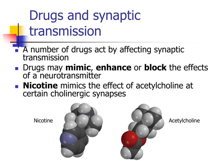 Drugs and synaptic transmission