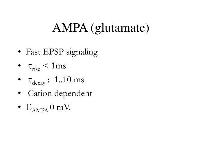 AMPA (glutamate)