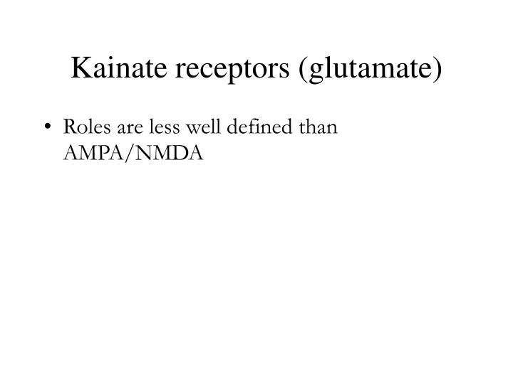 Kainate receptors (glutamate)