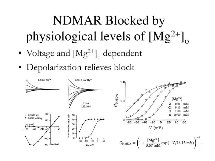 NDMAR Blocked by physiological levels of [Mg