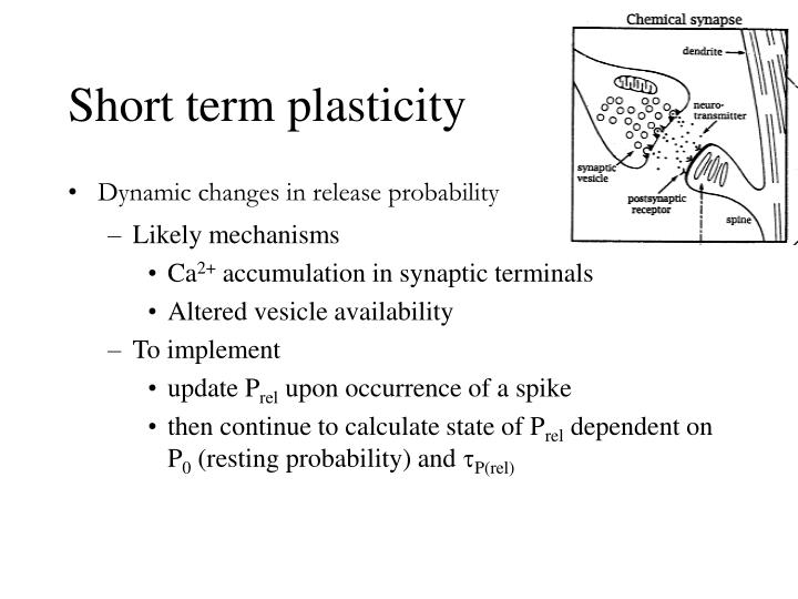 Short term plasticity
