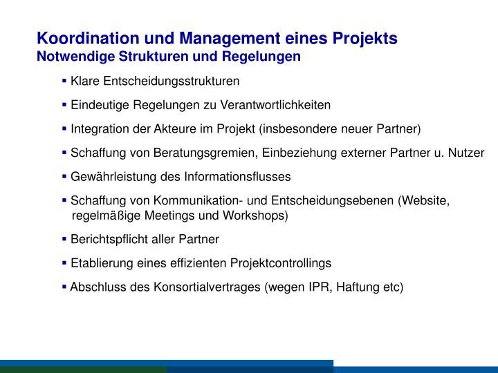 Koordination und Management eines Projekts