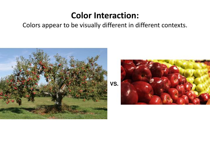 Color Interaction: