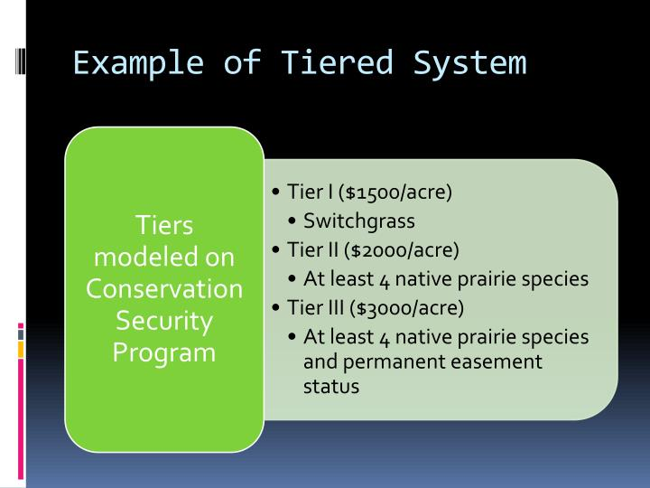 Example of Tiered System