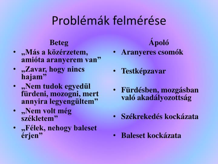 Problémák felmérése