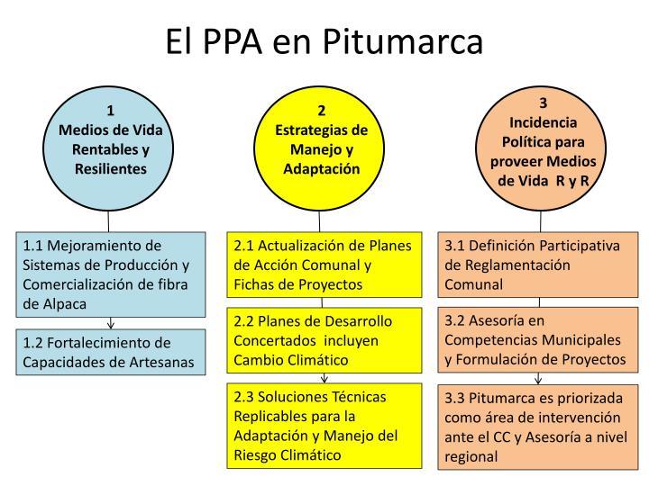 El PPA en Pitumarca