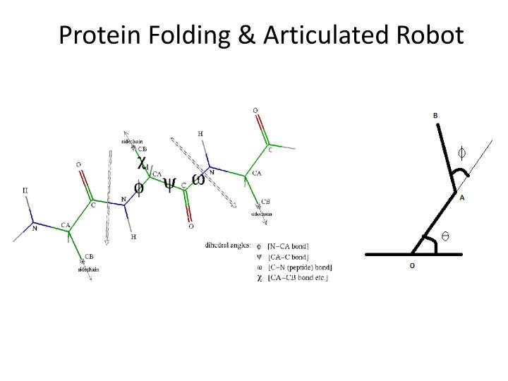 Protein folding articulated robot