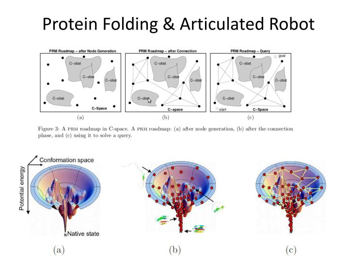 Protein Folding & Articulated Robot