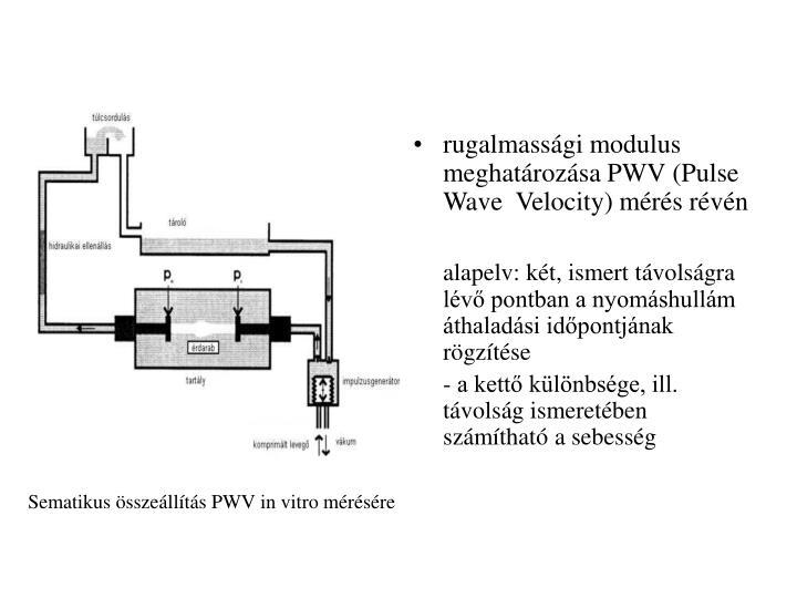 rugalmassági modulus meghatározása PWV (Pulse Wave  Velocity) mérés révén