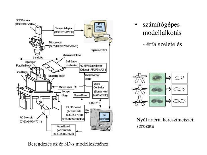 számítógépes modellalkotás