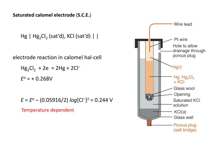 Saturated calomel electrode