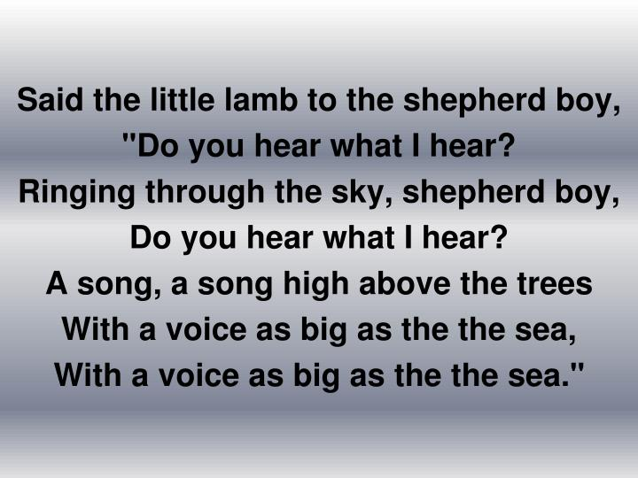 Said the little lamb to the shepherd boy,