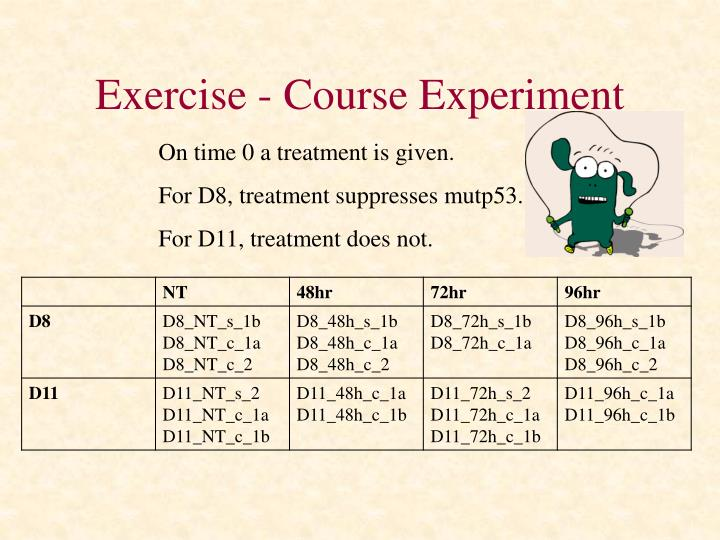 Exercise - Course Experiment