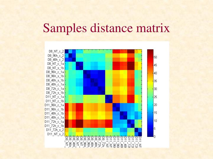 Samples distance matrix