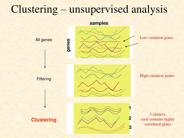 Clustering – unsupervised analysis