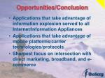 opportunities conclusion