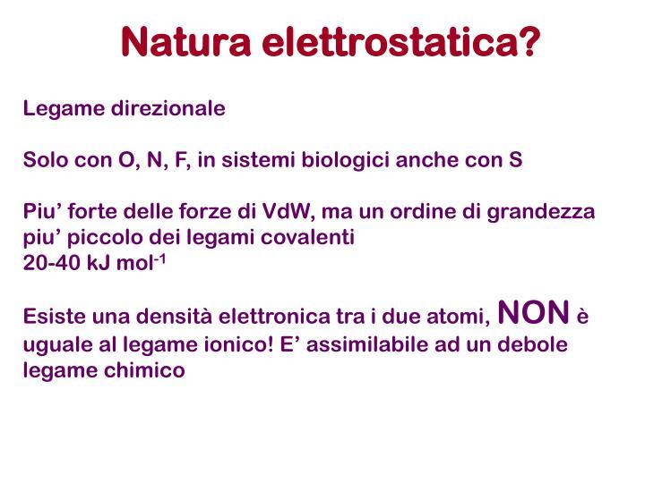 Natura elettrostatica?