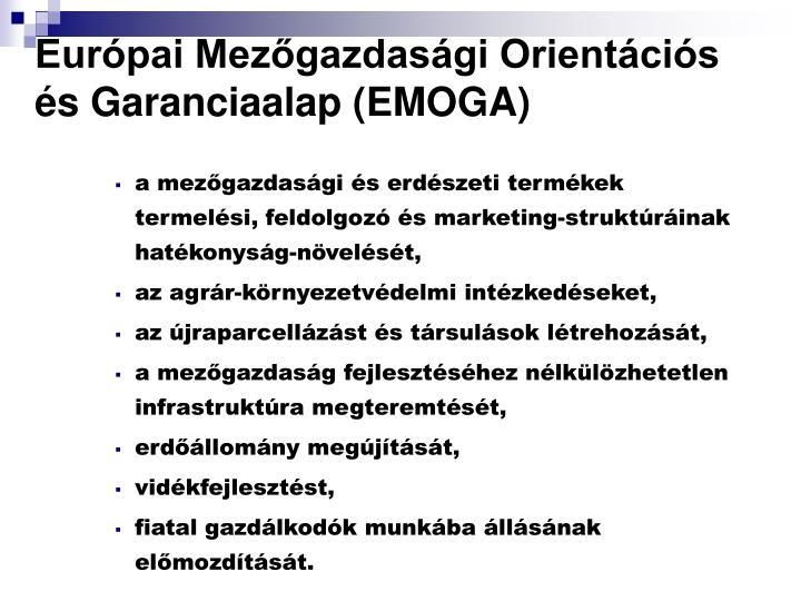 Európai Mezőgazdasági Orientációs és Garanciaalap (EMOGA)
