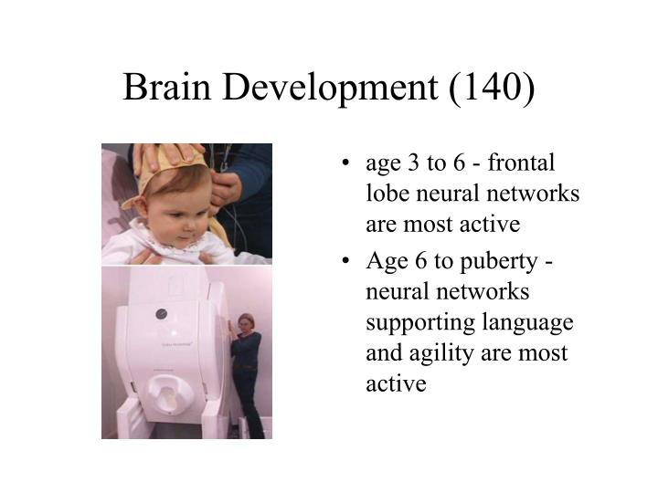 Brain Development (140)