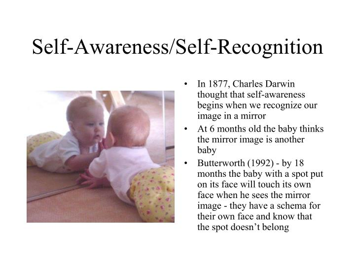 Self-Awareness/Self-Recognition