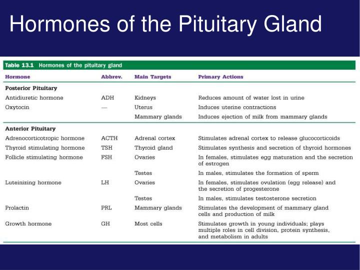 Hormones of the Pituitary Gland