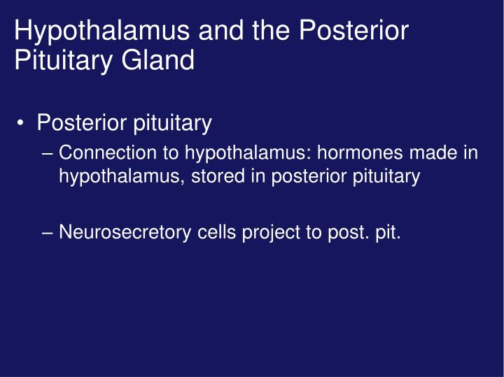 Hypothalamus and the Posterior Pituitary Gland