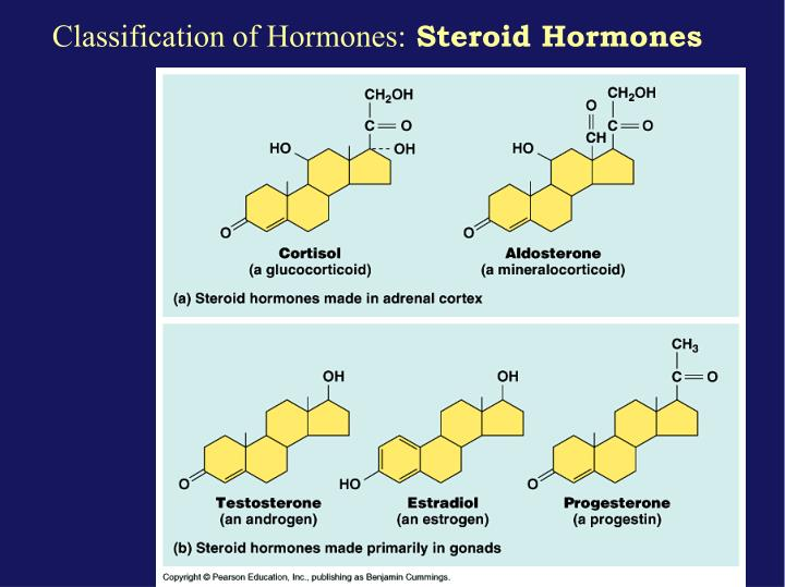 Classification of Hormones: