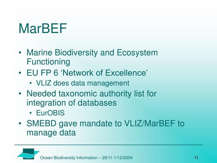 MarBEF