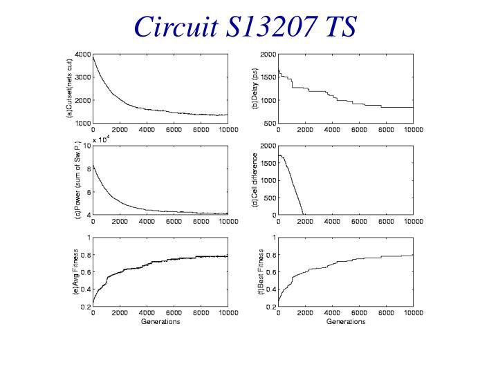 Circuit S13207 TS