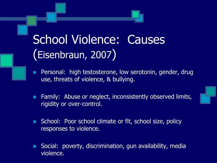 School Violence:  Causes