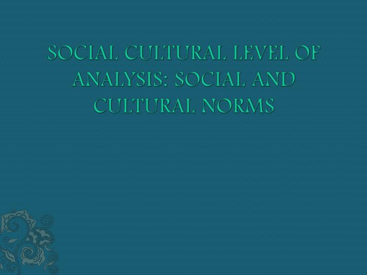 Social cultural level of analysis social and cultural norms