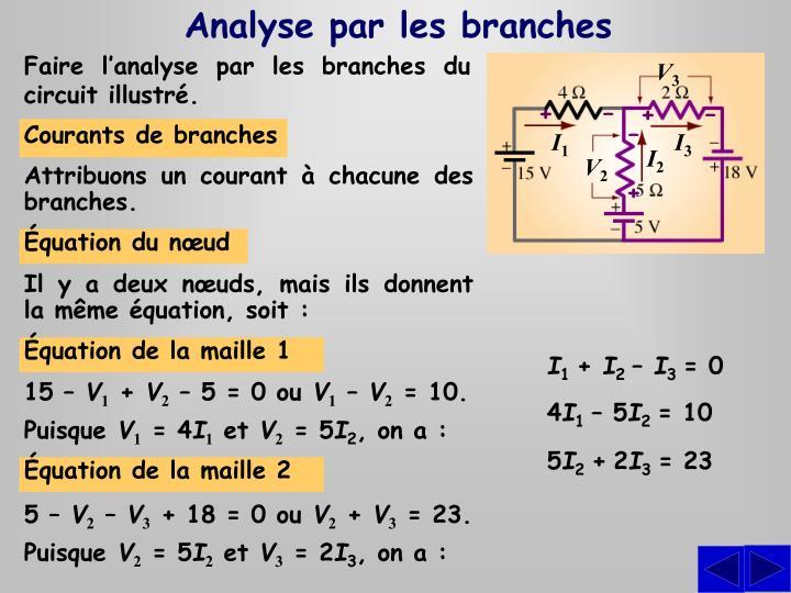 Analyse par les branches