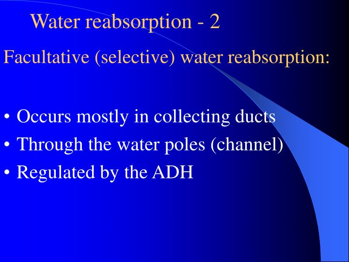 Water reabsorption - 2