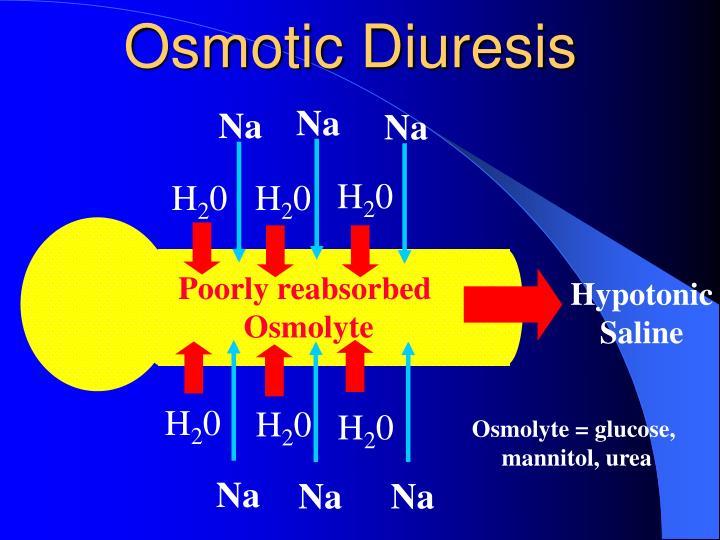 Osmotic Diuresis