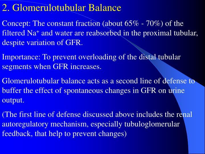 2. Glomerulotubular Balance