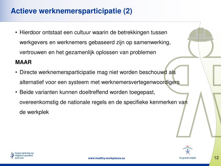 Actieve werknemersparticipatie (2)