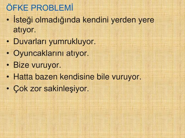 ÖFKE PROBLEMİ