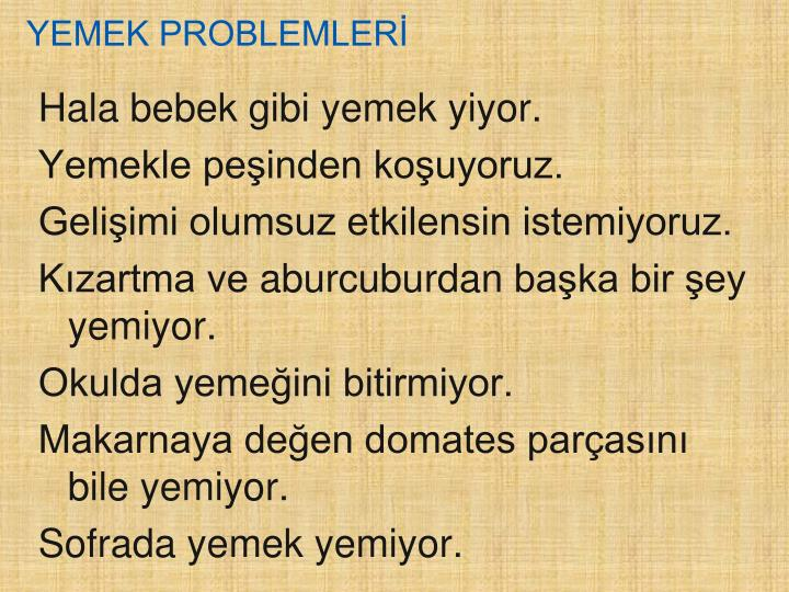 YEMEK PROBLEMLERİ