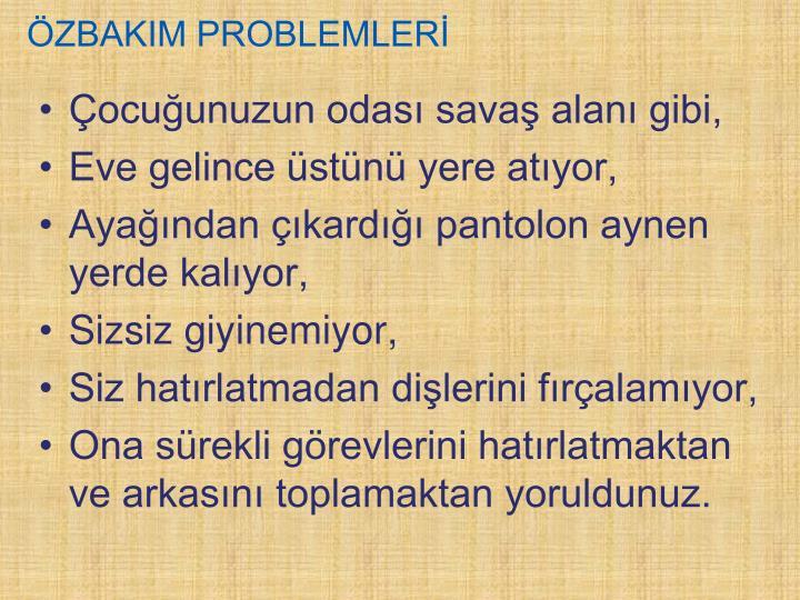 ÖZBAKIM PROBLEMLERİ