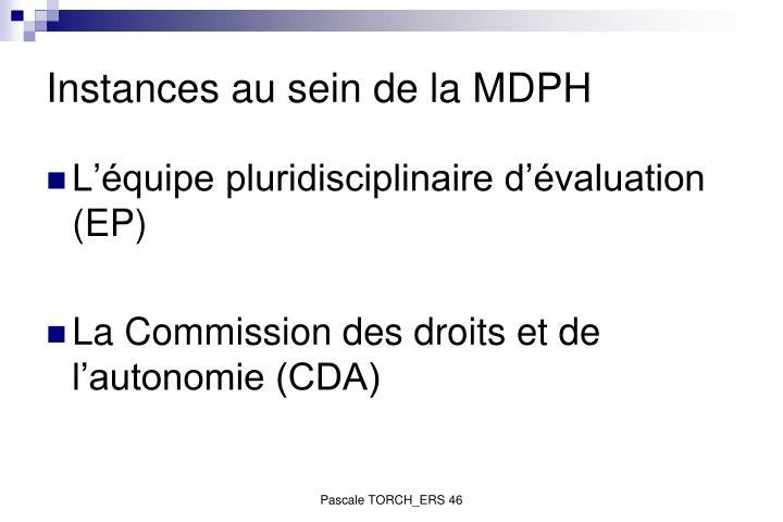 Instances au sein de la MDPH