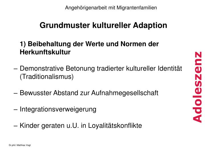 Grundmuster kultureller Adaption
