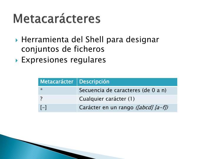 Metacarácteres