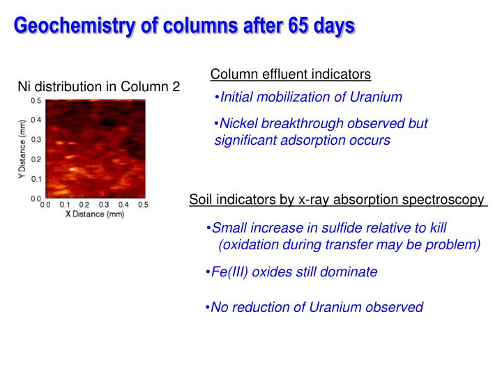 Geochemistry of columns after 65 days