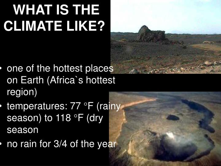 WHAT IS THE CLIMATE LIKE?