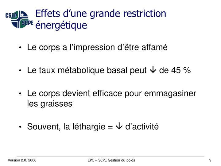 Effets d'une grande restriction énergétique